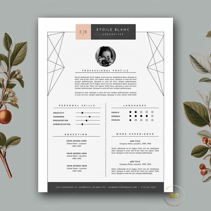 72 best ✏ Professional Resume Templates images on Pinterest ...