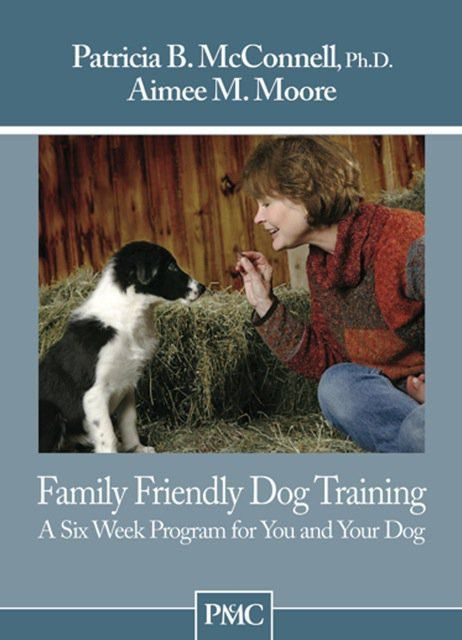 The 7 Basic Must-Haves for Training Your Dog   Rover.com