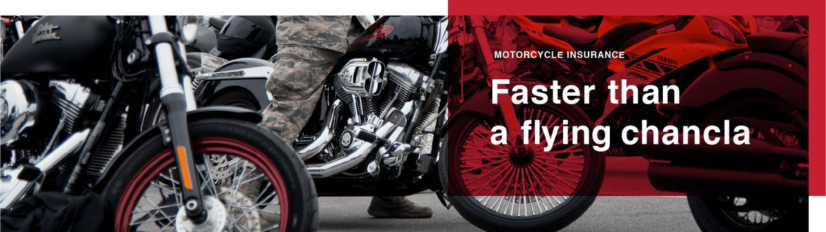 Motorcycle | Pronto Insurance