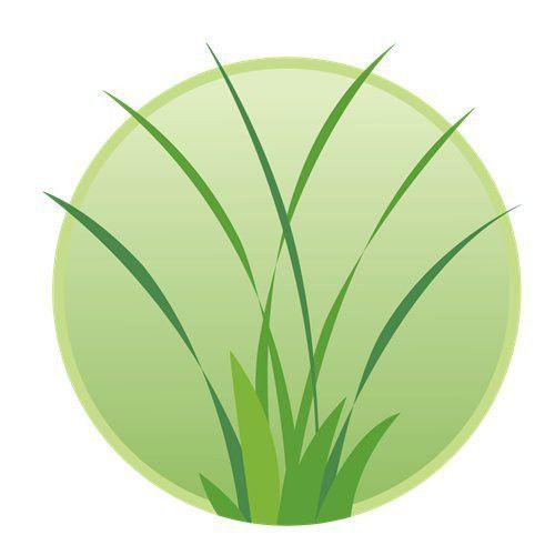 Lawn Mowing - Home - Oak Lawn, IL