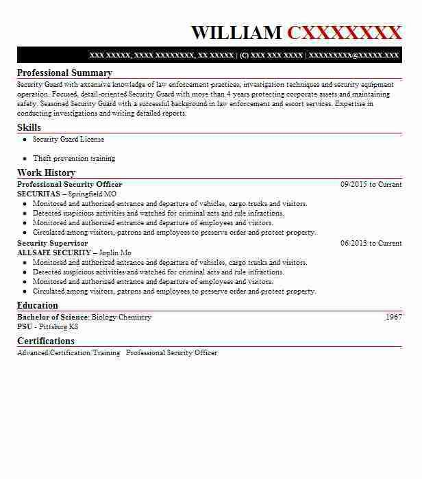 Best Professional Security Officer Resume Example | LiveCareer