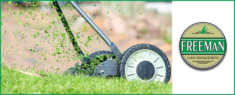 Freeman Lawn Management offers Commercial Lawn Care Services in ...