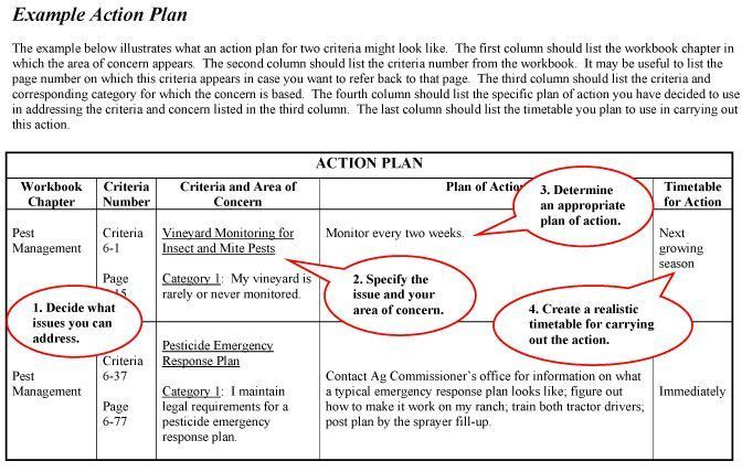 action plan for individual criteria using provided action plan ...
