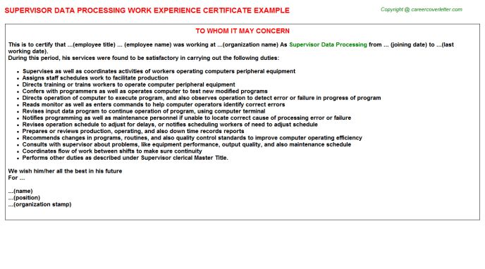 Data Architect Work Experience Letters
