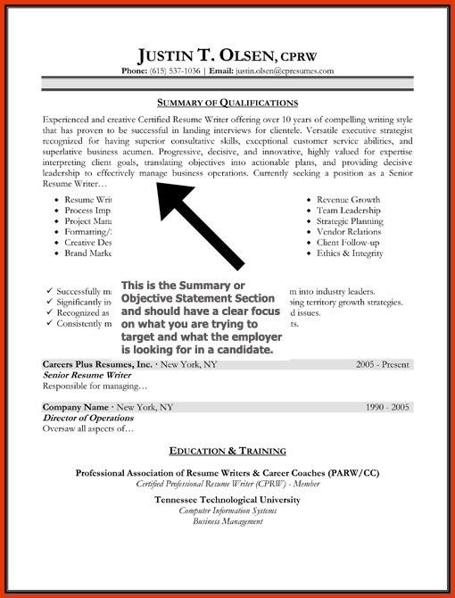 Resume Objective Statements. What Will You Do To Make The Best ...