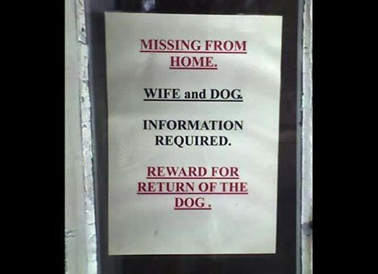 Funny Lost Pet Signs (24 Photos) : theCHIVE