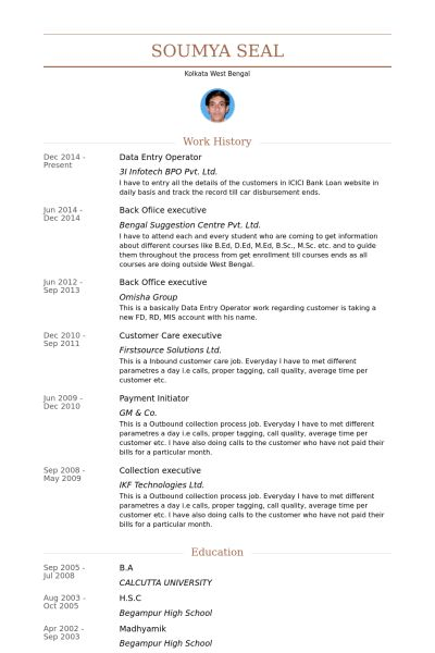Data Entry Operator Resume samples - VisualCV resume samples database