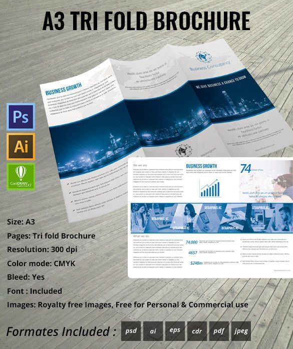 16+ Awsome Brochure Sizes And PSD Design Examples | Free & Premium ...
