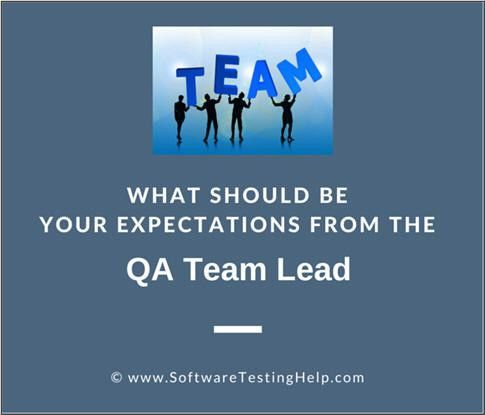 What Should be Your Expectations From the QA Team Lead? — Software ...
