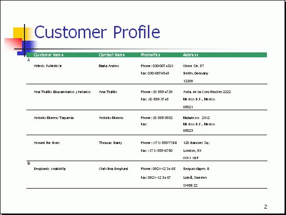 Free PowerPoint Report Sample - Customer Profile