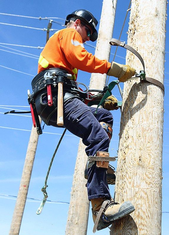 Students Strut Skills for Employers at Powerline Rodeo - News ...