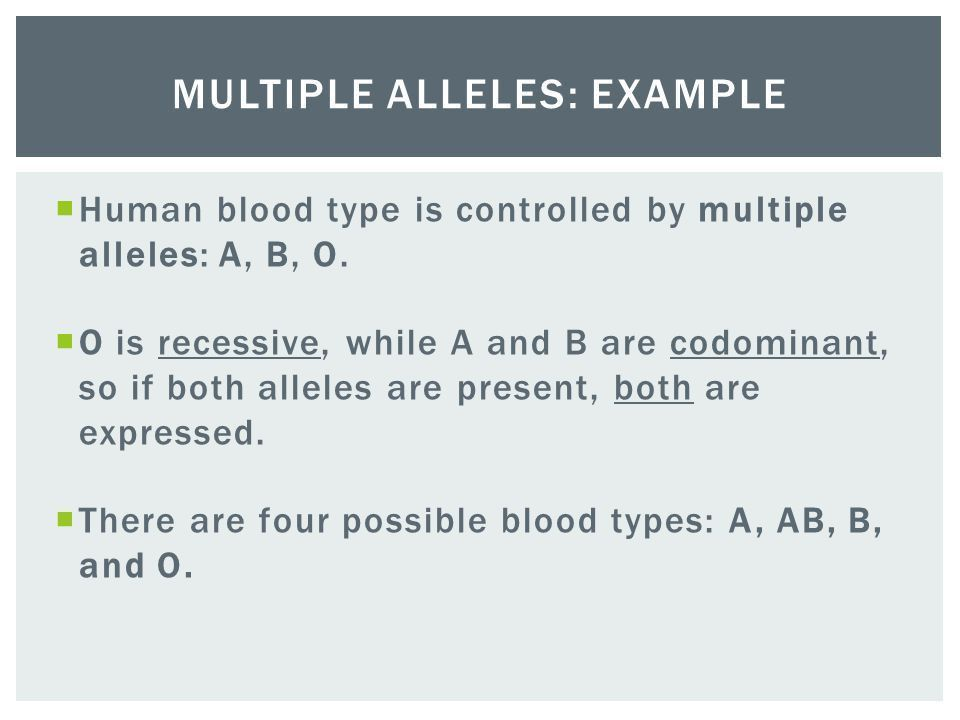 What's Your Blood Type? A B AB O. - ppt video online download
