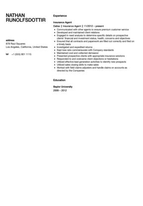 Insurance Agent Resume Sample | Velvet Jobs