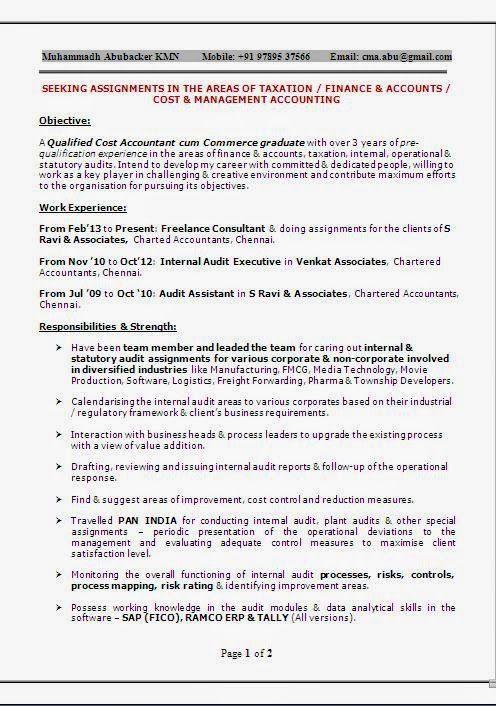 cv example word Beautiful Excellent Professional Curriculum Vitae ...