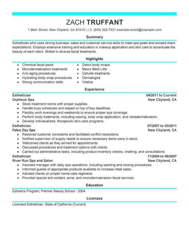 Resume : Resume Summary Statement Examples Customer Service ...