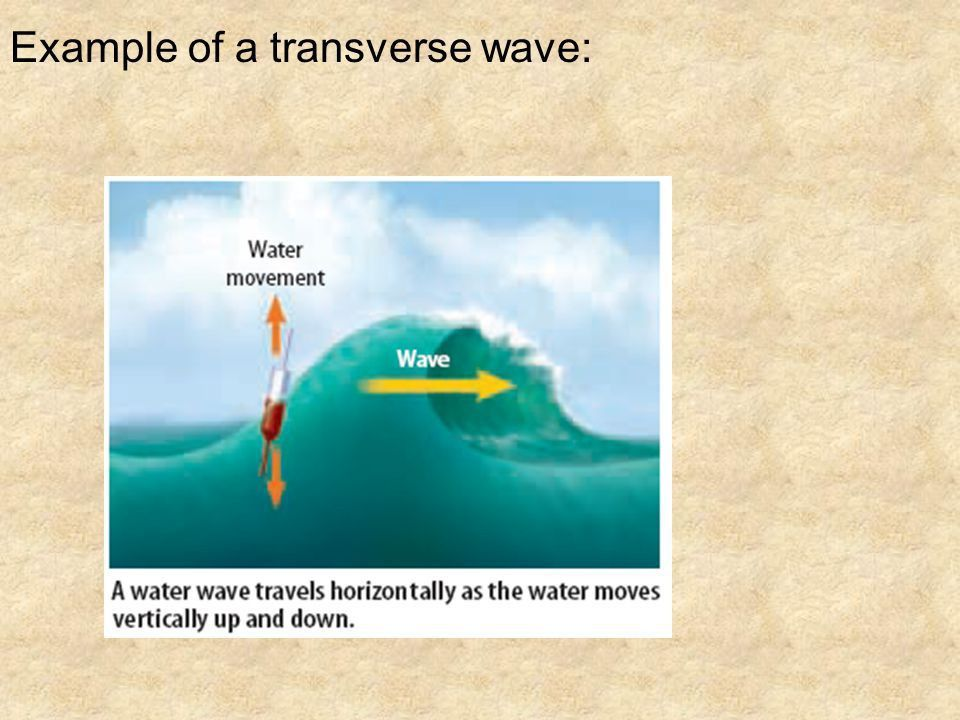 Module 7 Waves/Sound. - ppt download