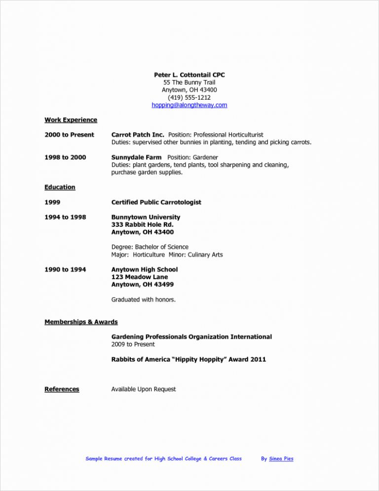 Download Resume Builder For Teens | haadyaooverbayresort.com