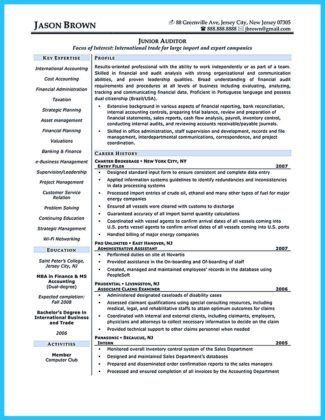 Internal Auditor Resume   Jobs.billybullock.us