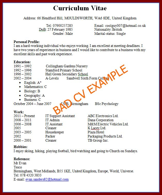 15 Excellent CV Examples For Job Seeking For The First Time ...