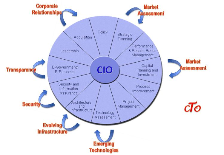 CIO vs. CTO – What's The Difference? | Dream. Develop. Direct.