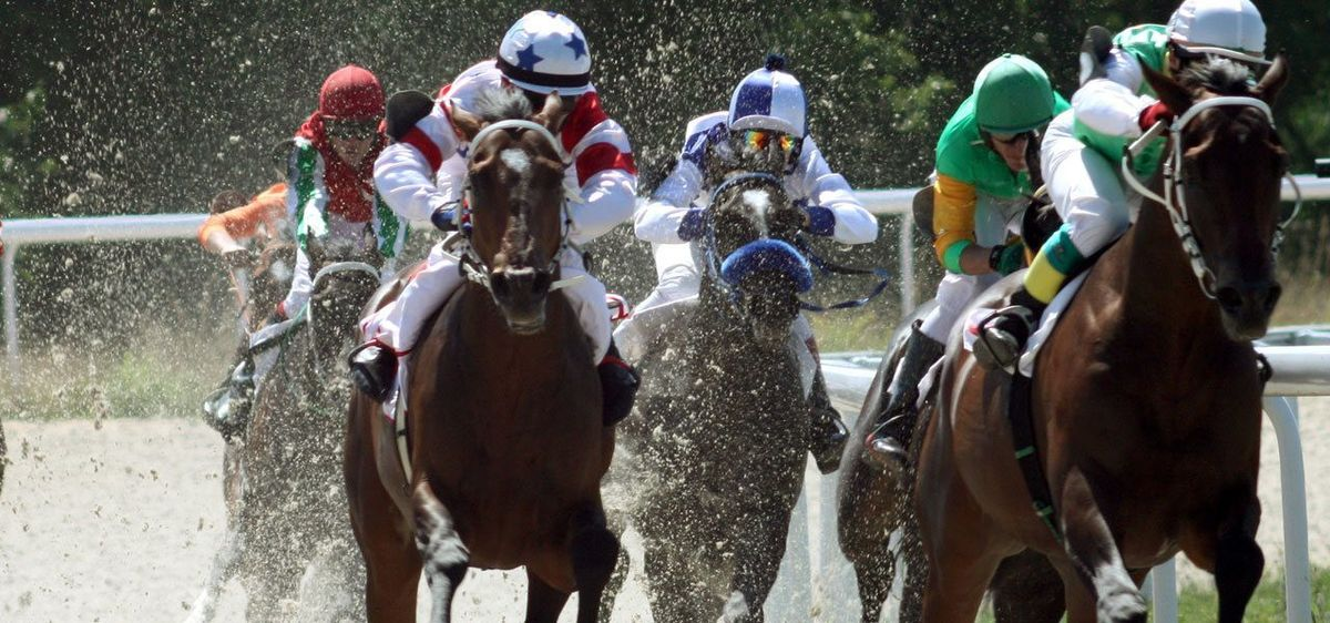 Webonise | Daily Racing Form TicketMaker Case Study