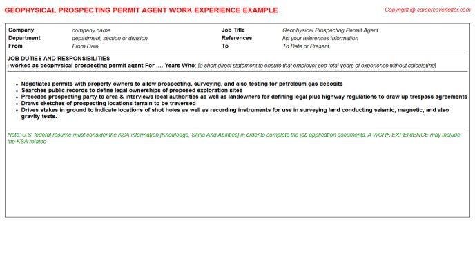 Permit Expeditor CV Work Experience Samples