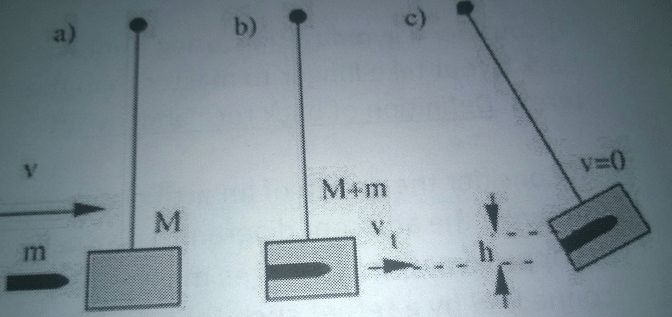 The Ballistic Pendulum Integrates Energy Conservat... | Chegg.com