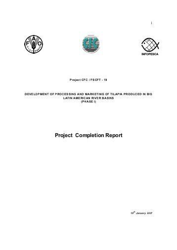 Project Completion Report. Simple-Implementation-Plan-Template ...