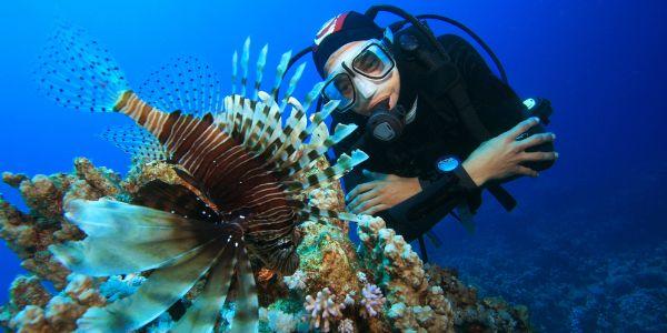 Marine Biology by Jamie Philipp on Prezi