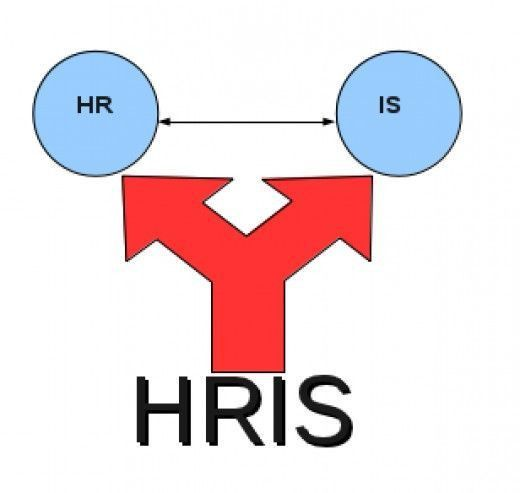 47 best HR images on Pinterest | Human resources, Resource ...