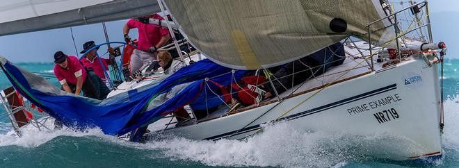 A prime example of determination to reach Sail Port Stephens