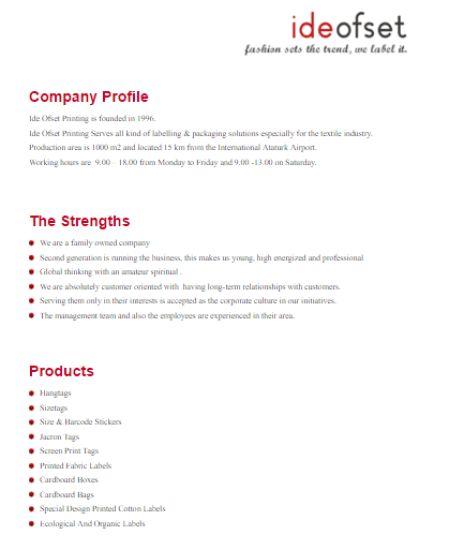 company profile template pdf