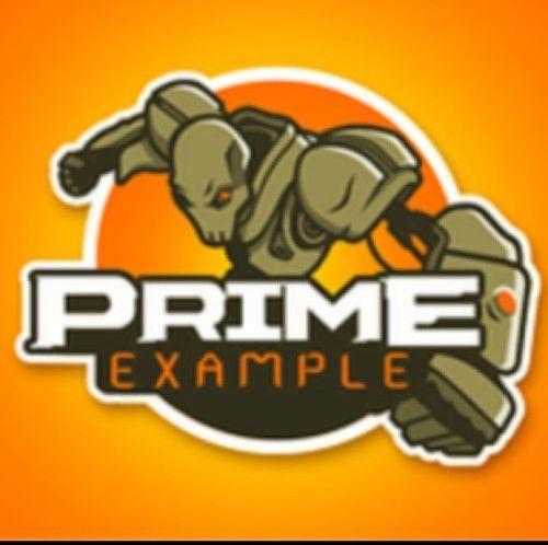 Team Prime Example (@PrimeCOD) | Twitter
