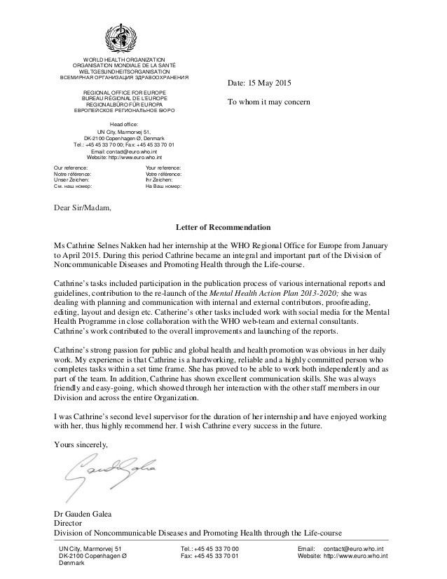 United Nations recommendation letter
