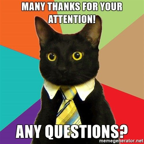 Many thanks for your attention! any questions? - Business Cat ...