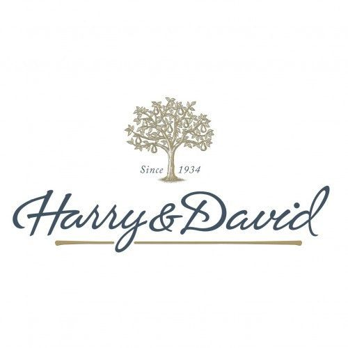 Harry & David: Delicious Gifts for the Holidays + 15% off Coupon ...