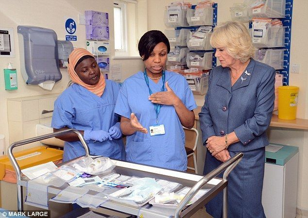 Best 25+ Clinical nurse specialist ideas on Pinterest | Clinical ...