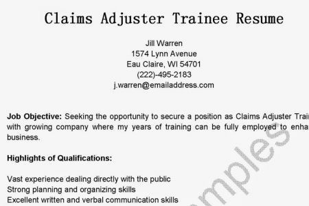 Claims Adjuster Resume Objective. resume objective statement for ...