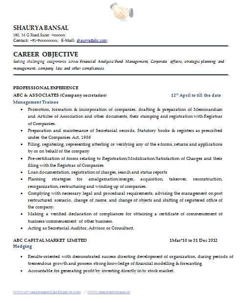 Professional Profile Resume Examples – Okurgezer.co