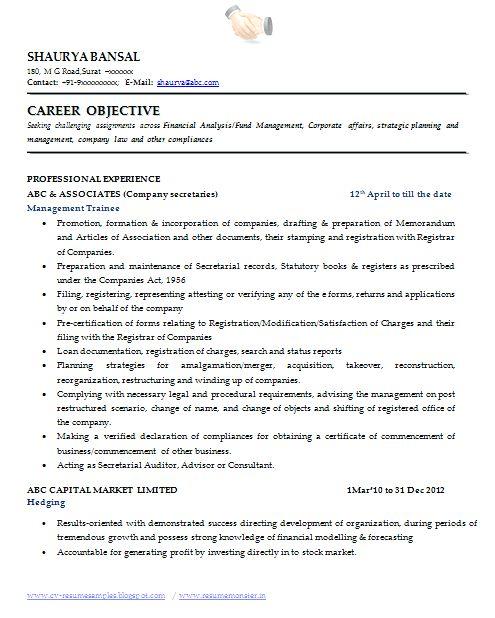 professional profile resume examples okurgezerco