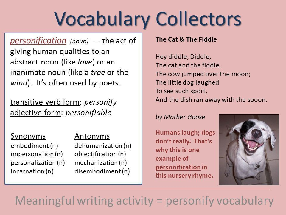 Vocabulary Collectors Meaningful writing activity = personify ...