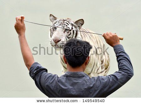 Zoo Keeper Stock Images, Royalty-Free Images & Vectors | Shutterstock