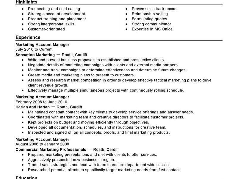 Ingenious Account Manager Resume 6 Best Account Manager Resume ...