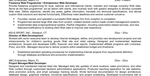 Analyst Resume Performance Analyst Job Description Sample Network ...
