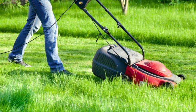 First Impression Matters – Your Lawn – Keeping Your Home Clean ...