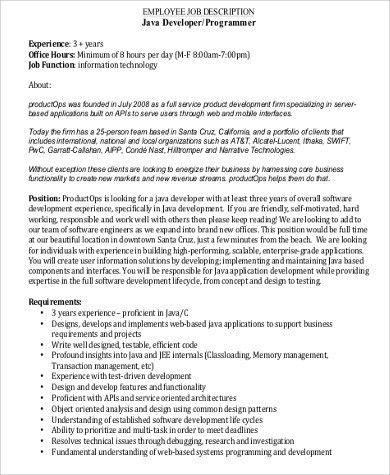 Computer Programmer Job Description Sample   11+ Examples In Word, PDF