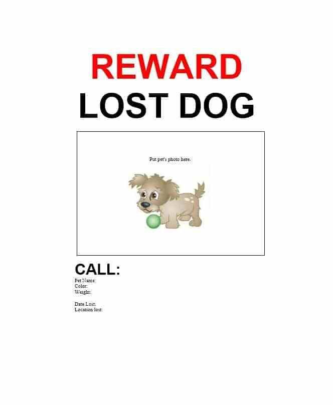 40 Lost Pet Flyers [Missing Cat / Dog Poster]   Template Archive  Lost Pet Poster Template