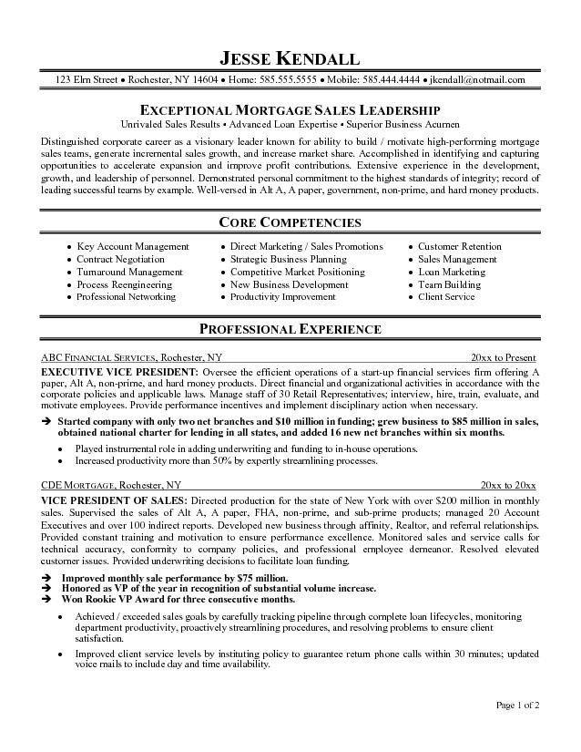 Executive Resume Templates | health-symptoms-and-cure.com