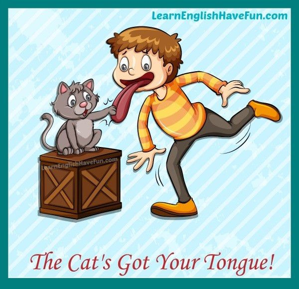 Cat Got Your Tongue Idiom