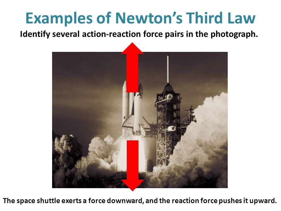 Forces and Newton's Third Law - ppt video online download